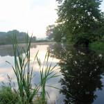 Pond horizontal